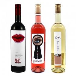 Vinos BODEGAS PALOMILLO (Pack Surtido Degustación 3 uds.)