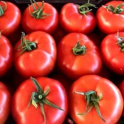 "Tomate ""Daniela"" de Huerta EL GURULLO (1 Kg.)"