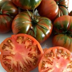 "Tomate ""Raf"" de Nijar Huerta EL GURULLO (1 Kg.("