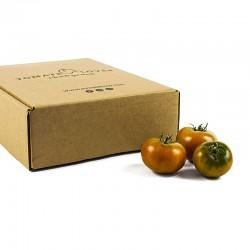 Tomate Summer Lover (Caja de 3 kg)