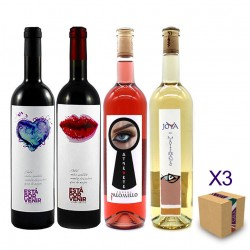 Vinos Ecológicos BODEGAS PALOMILLO (Pack Surtido Degustación 12 uds.)