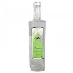Dry Gin Ignis Premium DE AUTOR (varios formatos)
